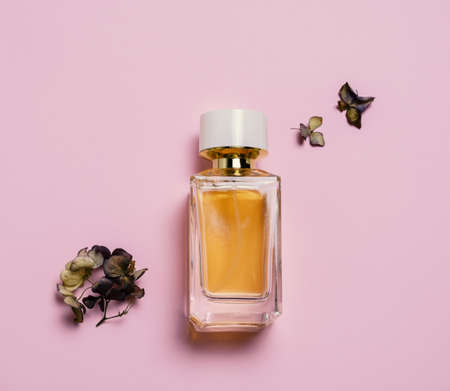 Top view composition with dried hydrangea flowers and perfume bottle on a pastel pink background.