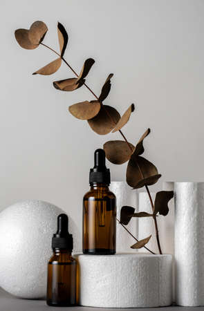 Luxury minimal still life with cosmetic products and brown dry eucalyptus leaves white products stands gray background Banco de Imagens