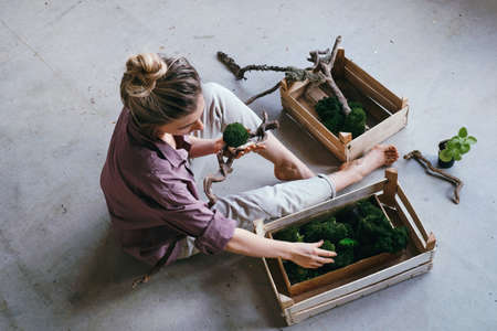 Top view a woman selects stabilized moss for vertical landscaping