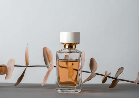Perfume bottle with eucalyptus dry brown leaves leaves on a gray background