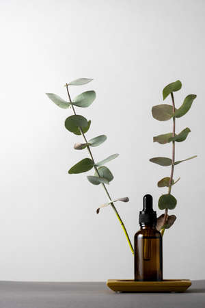 Cosmetic product brown glass jar with eucalyptus dry leaves on a gray background, copy space.
