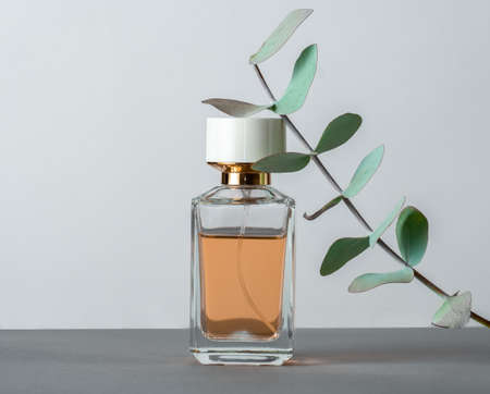 Perfume bottle with eucalyptus leaves leaves on a gray background