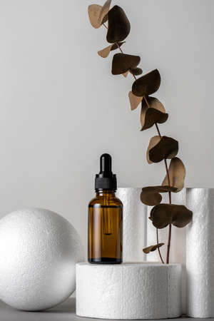 Luxury minimal still life with cosmetic product and brown dry eucalyptus leaves white product stands gray background