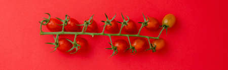 Top view red mini tomatoes on a red background wide banner Stock Photo