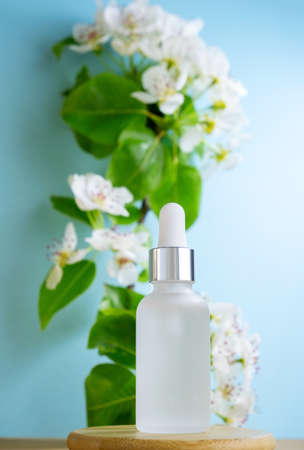 Blank transparent beauty serum dropperon a blue background with blooming apple tree branch. Beauty care concept, selective focus.