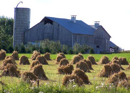 amish: Amish Barn