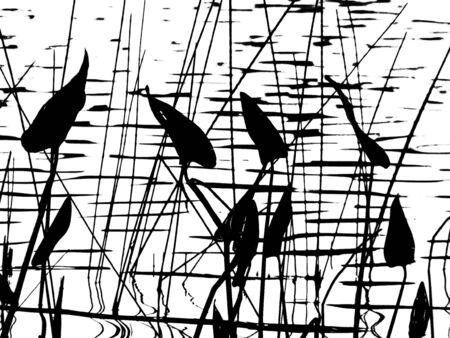 pickerel: Pickerel weed silhouette