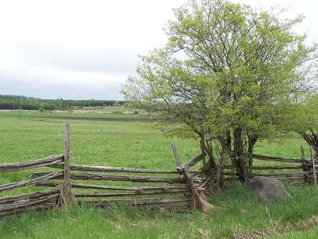 cedar rail fence