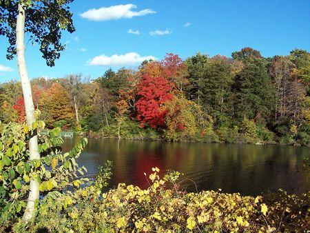 秋の色のシーン 写真素材
