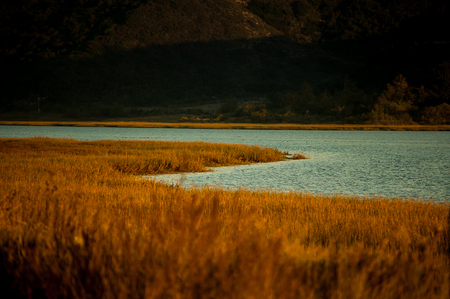 twilight shot of the estuary in the carlsbad lagoon