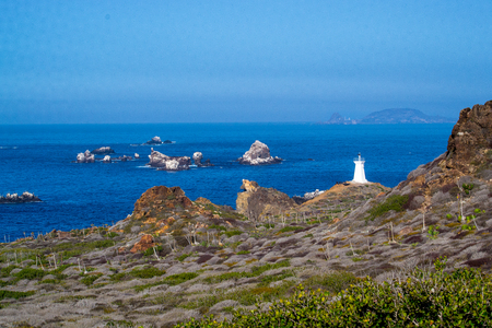 Lighthouse in Baja Mexico Фото со стока