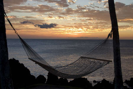 silhoutte of a hammock at sunset photo