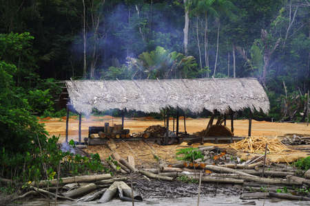 miserly: This hut was found on the edge of the Amazon river and is used as a storage and processing place for cutting down the trees!