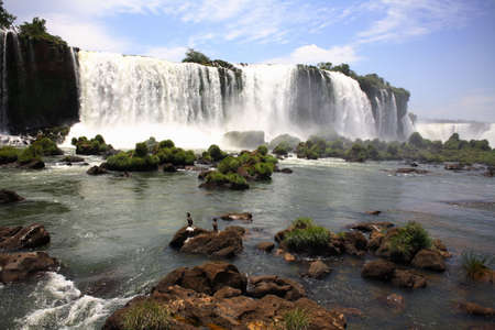 The Iguassu (or Iguazu) Falls