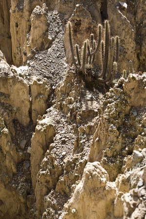 발레 드 라 루나 (달의 계곡)는 소금 산의 침식으로 형성된 기괴하고 거의 달의 풍경입니다.