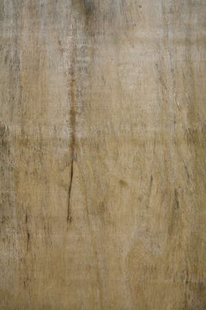 A texture of an old cracked wooden board. Stock Photo - 4423846