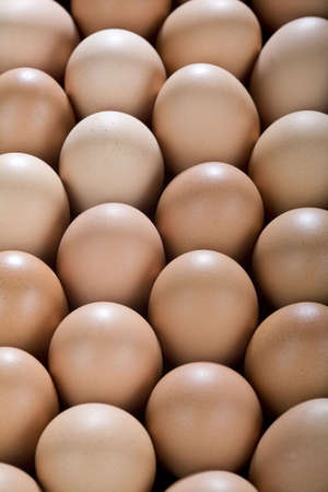 Uno sfondo con un sacco di uova di gallina marrone, da sopra.