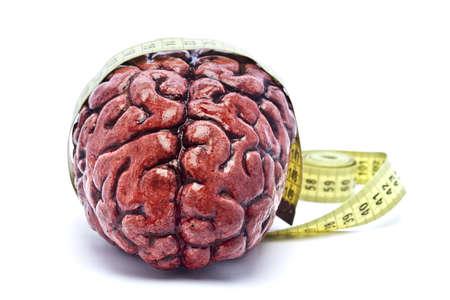 mental object: Un cerebro sangriento, sobre un fondo blanco, con una cinta de medici�n alrededor de ella. Revise las otras im�genes en esta serie.