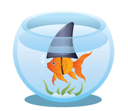 A cute little goldfish in a fish bowl wearing a shark fin to scare predators away.