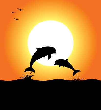 Two dolphins jumping, at sunset, with birds Vector