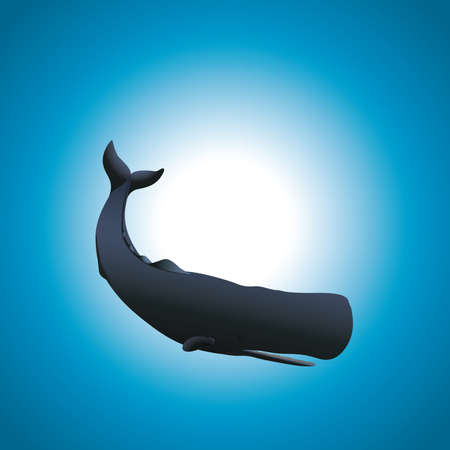 blue whale: A whale on a blue gradient background Illustration