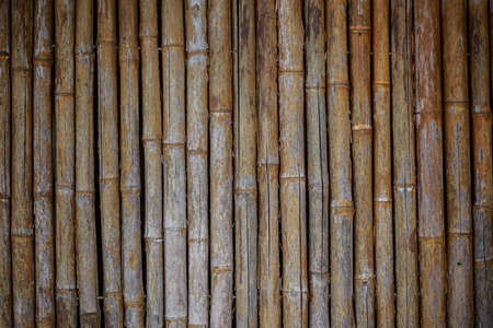 A close-up image of a bamboo wall texture background  Check out other textures in my portfolio  Stock Photo - 17223330