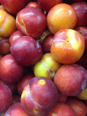 sours: Fresh plums Stock Photo