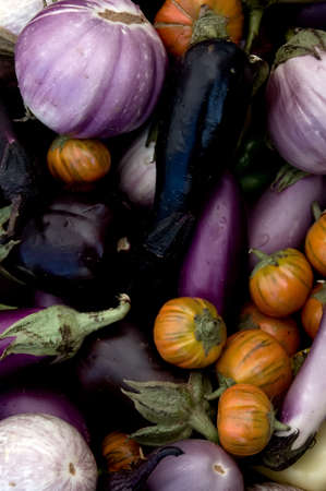 Multi-colored eggplant varieties at the farmers market