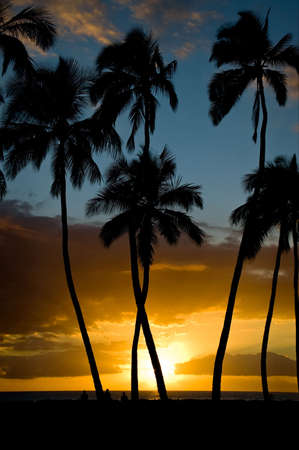 A perfect November sunset at Kihei, Maui.