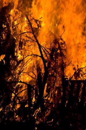 A brush fire next to a farm building photo