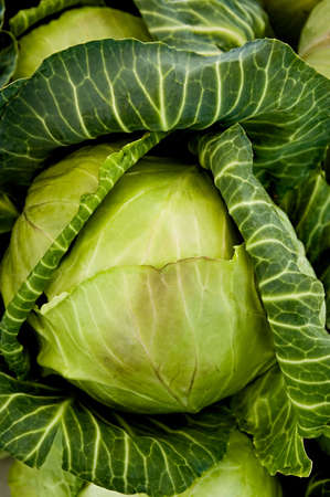 Close up image of a cabbage head at a farmers market. Stock Photo