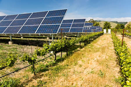 Solar photovoltaic collectors powering a California vineyard, reducing the carbon footprint