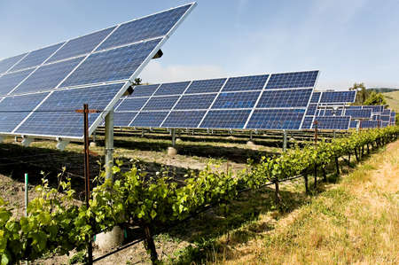 A group of solar photo voltaic panels powering a California vineyard, reducing the carbon footprint
