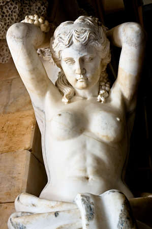 afrodite: Statua in marmo raffigurante la dea greca Afrodite