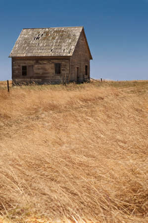 An abandoned wooden farmhouse in a grassy field Stock Photo