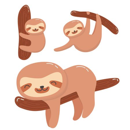 Cute sloth set collection