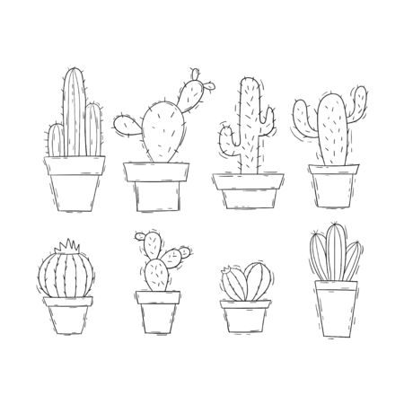 Cactus doodle set collection