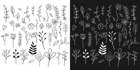 Doodle flowers set collection vector