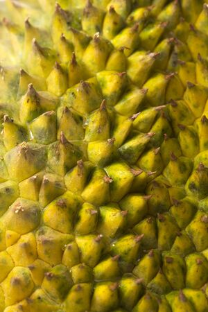 King of fruits, durian and durian peels isolated on white background Stock Photo