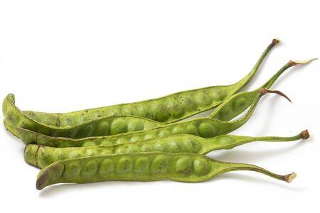 Parkia speciosa ( petai, bitter bean, twisted cluster bean, stinker or stink bean) on white background. Reklamní fotografie