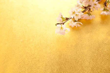 桜の木と和紙