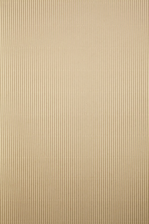 corrugated cardboard: Paper texture Stock Photo