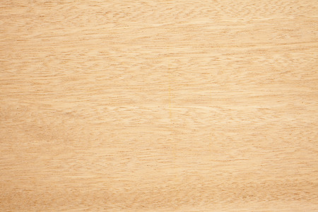 wood background: Woody texture Stock Photo