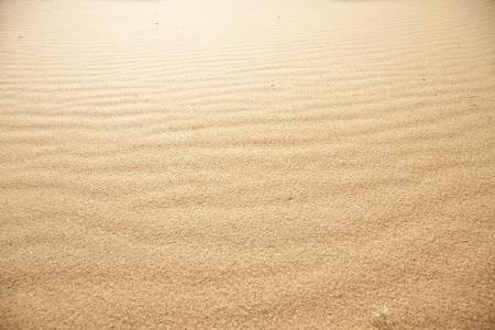 Sandy beach Banque d'images