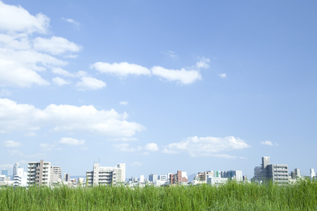 grass and sky: Grassland and city