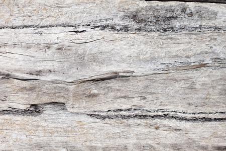 Vintage wood board texture background Archivio Fotografico