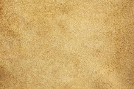 Fondo de textura de la piel Foto de archivo - 50887428