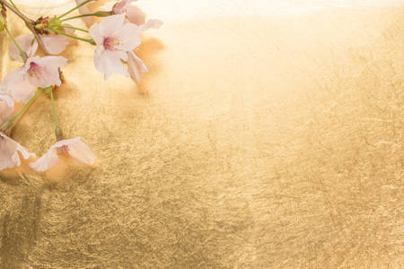 Cherry blossoms and gold paper background Banque d'images