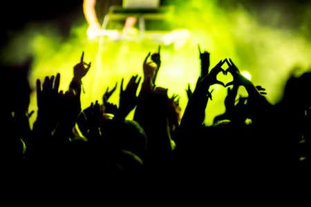 Cheering crowd at concert rock concert