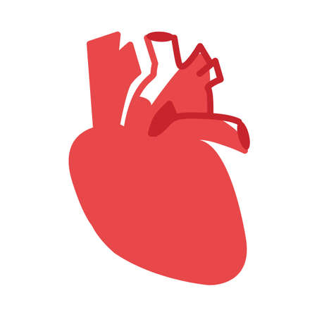 cardiologist: Heart vector image to be used in web applications, mobile applications and print media.